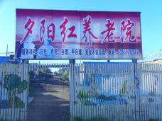 漠河县夕阳红养老院